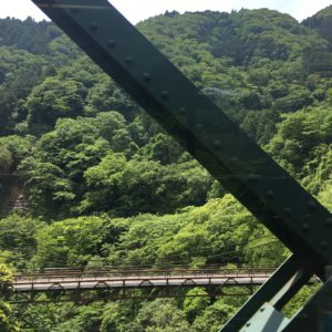 Scenery on train to Hakone Japan with kids