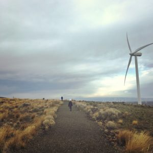 Exploring the Wild Horse Wind Farm in Ellensburg with kids