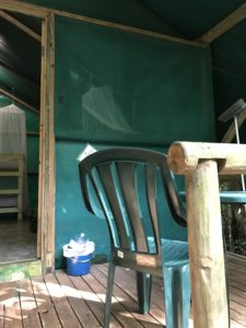Canvas hut in the Daintree Forest