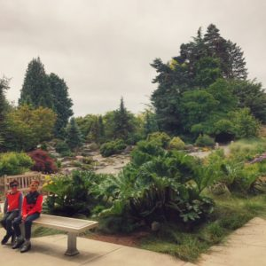 Bellevue Botanical Gardens in free to visit with families