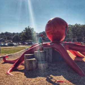 Playground near beach near University of Victoria